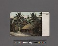Native dwelling house. Ceylon (NYPL Hades-2359858-4044623).tiff