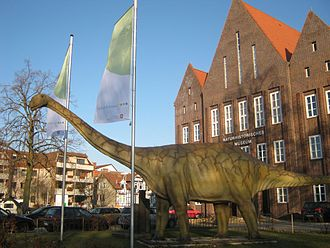Spinophorosaurus - Spinophorosaurus model outside the Braunschweig Museum