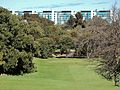 New Hospital from the Golf Course (21322720008).jpg