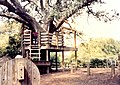 New Orleans Audubon Park October 1986 01.jpg