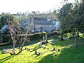 Niton churchyard - geograph.org.uk - 128226.jpg