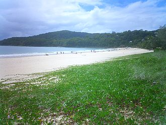 Noosa Heads, Queensland - The beach along the town of Noosa Heads.