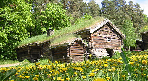 dom z dachem wykonanym z darni