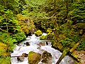 North Cascades National Park (9290011935).jpg