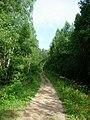 Old road - panoramio (2).jpg