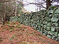 Old stone wall - geograph.org.uk - 647557.jpg