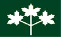 Ontario flag proposal 3 white ML on green.png