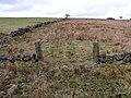 Open Gate - geograph.org.uk - 1769507.jpg