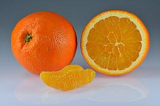 Orange (fruit) Citrus fruit