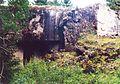 Orlické Záhoří, Černá Voda u Orlického Záhoří, R-S 91 (rok 2000).jpg