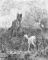 PL Jean de La Fontaine Bajki 1876 page107.png