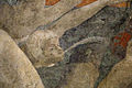 Paolo uccello, diluvio universale 12.JPG
