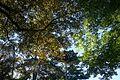 Parc Montsouris @ Paris (29527312963).jpg