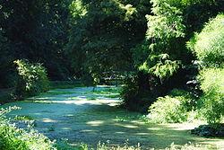 Parcul castelului Bella Fay Simeria.jpg