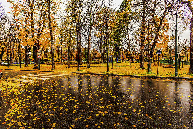 Paris raining autumn cityscape (8252181936).jpg