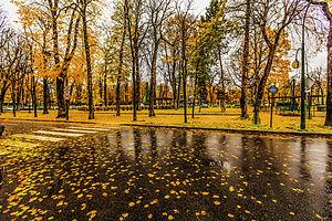 Paris raining autumn cityscape (8252181936)