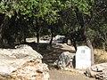 Park Goren, Israel 06.jpg