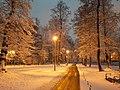 Park Wrocławski zimą.jpg