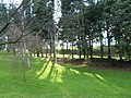 Parque Eugenio Granell - 13.JPG