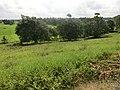 Patthini Pedesa, Polonnaruwa, Sri Lanka - panoramio.jpg