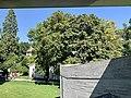 Pavillon Le Corbusier Museum, Zurich (Ank Kumar) 14.jpg