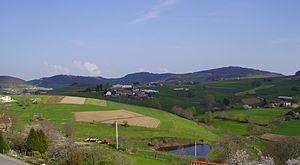 Monts du Lyonnais - Typical landscape of the Monts du Lyonnais