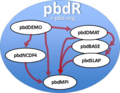 Pbd overview.png