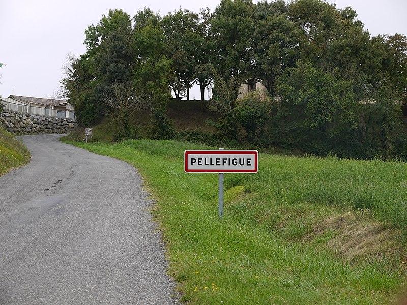 L'entrée nord de Pellefigue.