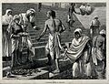 People bathing at Benares. Wood engraving. Wellcome V0020031.jpg