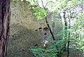 Perchtoldsdorf Kammerstein Westmauer2.jpg