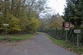 Perthes-en-Gatinais - Bois du Petit-Moulin - 2012-11-14 - IMG 8178.jpg