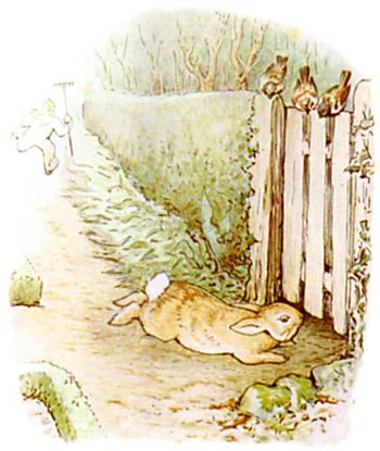 PeterRabbit23.jpg