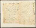 Phoca ursina - 1700-1880 - Print - Iconographia Zoologica - Special Collections University of Amsterdam - UBA01 IZ21100079.tif