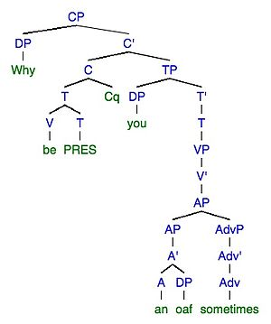 "Linguistic performance - Phrase tree structure of target ""Why are you an oaf sometimes"""