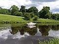 Pleasure boating on the Tees - geograph.org.uk - 489829.jpg