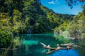 Plitvice Lake (164669657).jpeg