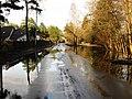 Pludi druvciema 2011 - panoramio (75).jpg