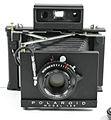 Polaroid 185.jpg
