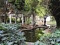 Pond - Yunnan University - DSC01832.JPG