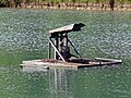 Pond aerator waterbird platform at Matching, Essex, England 01.jpg