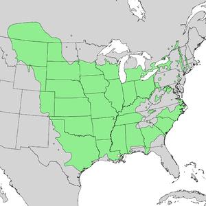 Populus deltoides - Image: Populus deltoides range map 2