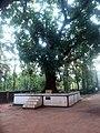 Porur Siva temple 02.jpg
