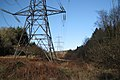 Power lines through Kiddens Plantation - geograph.org.uk - 1651717.jpg