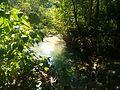 Pozo de agua en el Parque Nacional Terepaima.jpg