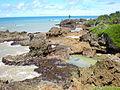 Praia de Tambaba.JPG