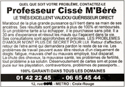 "Example flyer for a French-African ""marabout"""