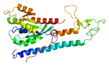 Protein RAB3A PDB 1zbd.png