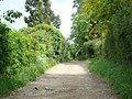 Public Footpath at the end of The Meadows, Chelsfield - geograph.org.uk - 1305709.jpg