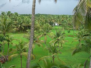 Punnakkulangara village in Kerala, India