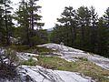 Quartzite Ridges on the La Cloche Silhouette Trail, 2012.jpg